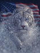 White Tiger America