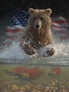 Brown Bear Fishing America