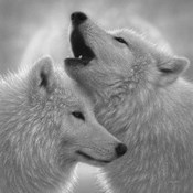 Wolves - Love Song - B&W