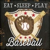 Eat, Sleep, Play, Baseball