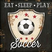 Eat, Sleep, Play, Soccer
