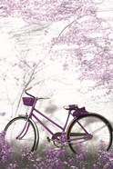 Ultra Violet Bicycle