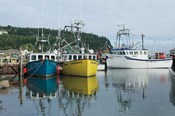 Bay of Fundy II