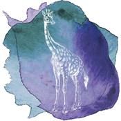 Color Spot Safari Animals Giraffe