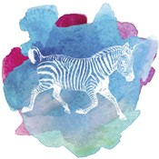 Color Spot Safari Animals Zebra