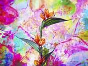 Garden Of Flowers M8A