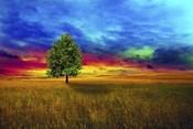 Lone Tree 2D