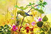 Nature Bird And Flowers 3