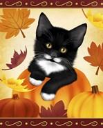 Falling Leaves Cat