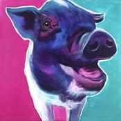 Pig - Sophie