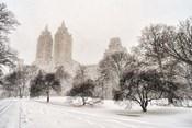 Blizzard In Central Park
