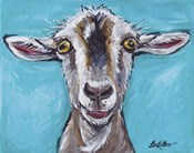 Goat Gizmo