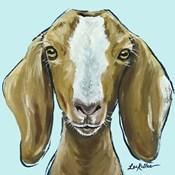 Goat Square Blue