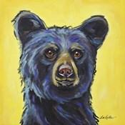 Black Bear Bernard