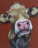 Cow Hazel