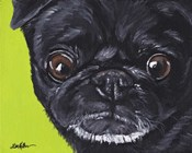 Black Pug On Green