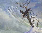 Winter Perch